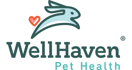 WellHaven Pet Health Minnetonka
